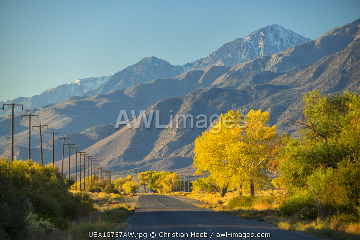 awl-images.com - USA / USA,California, Eastern Sierra, Highway near Bishop