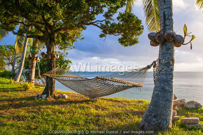 Hammock on a beach in Ha'apai Islands, Tonga, South Pacific