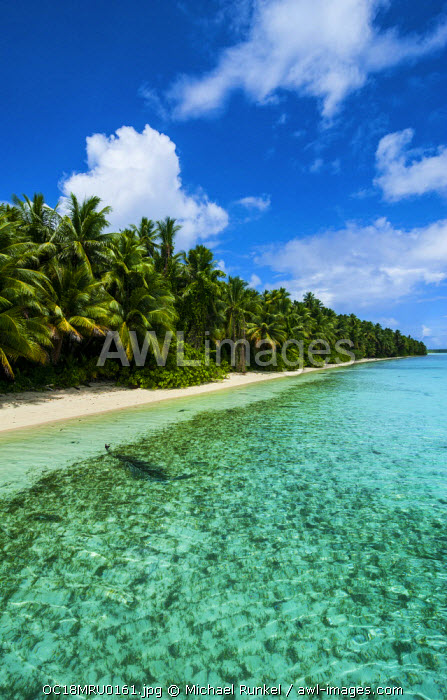 White sand beach in turquoise water in the Ant Atoll, Pohnpei, Micronesia