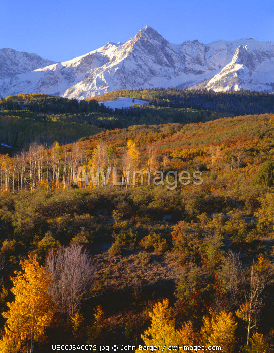USA, Colorado, Uncompahgre National Forest, Sunrise light on snow clad peaks of the Sneffels Range and fall colored aspen