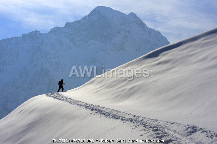 awl-images.com - Germany / Back country skier in front of the main chain of the Allgaeuer Alps, Hinterstein, Upper Allgau, Bavaria, Germany