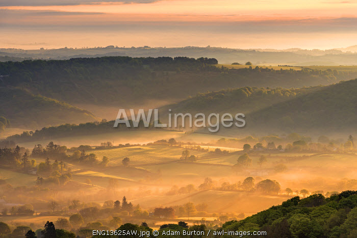 Mist covered rolling countryside at dawn, Dartmoor National Park, Devon, England. Spring (May) 2016.