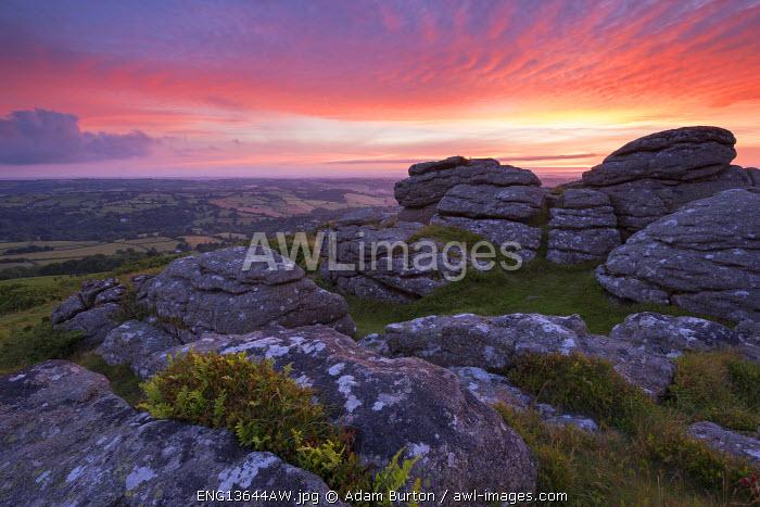 Pink dawn sky above Meldon Hill, Dartmoor National Park, Devon, England. Summer (July) 2016.