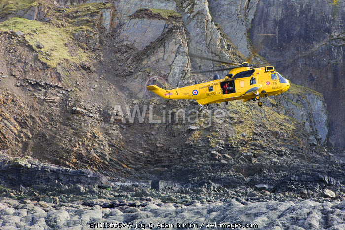 RAF helicopter performing a coastal rescue at the base of the steep cliffs of Spekes Mill Mouth, Hartland, Devon. Spring (April) 2010.