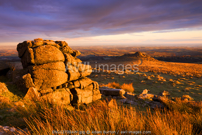 Golden sunshine glows against the granite outcrops at Belstone Tor, Dartmoor National Park, Devon, England. Winter (December) 2009