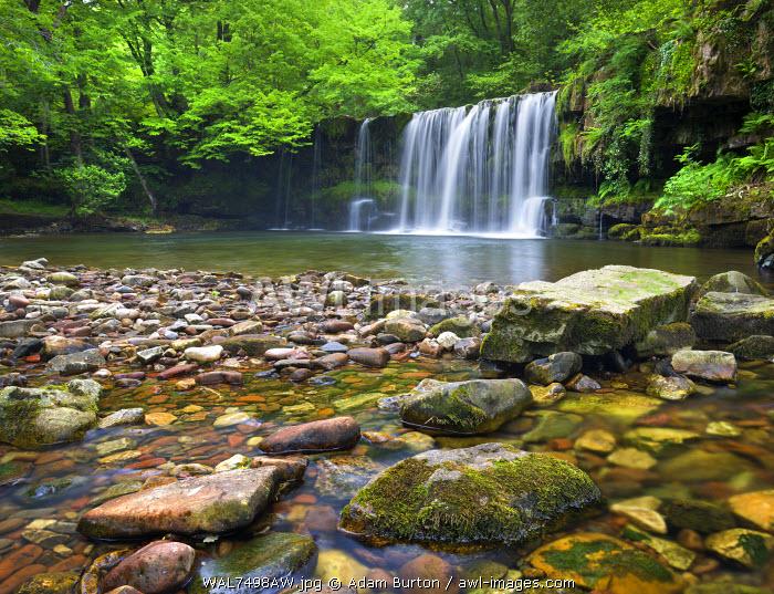 Scwd Ddwli waterfall on the Nedd Fechan River near Ystradfellte, Brecon Beacons National Park, Powys, Wales. Summer (June) 2009