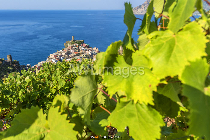 Europe, Italy, Cinque Terre. View of Vernazza.