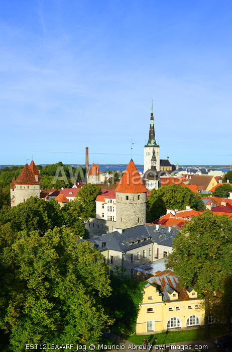 Old Town view from Toompea Hill, a Unesco World Heritage Site. Tallinn, Estonia