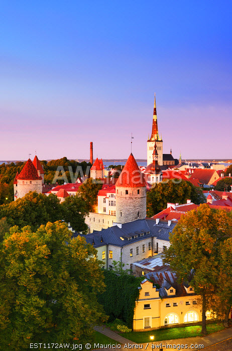 Old Town view from Toompea Hill at dusk, a Unesco World Heritage Site. Tallinn, Estonia