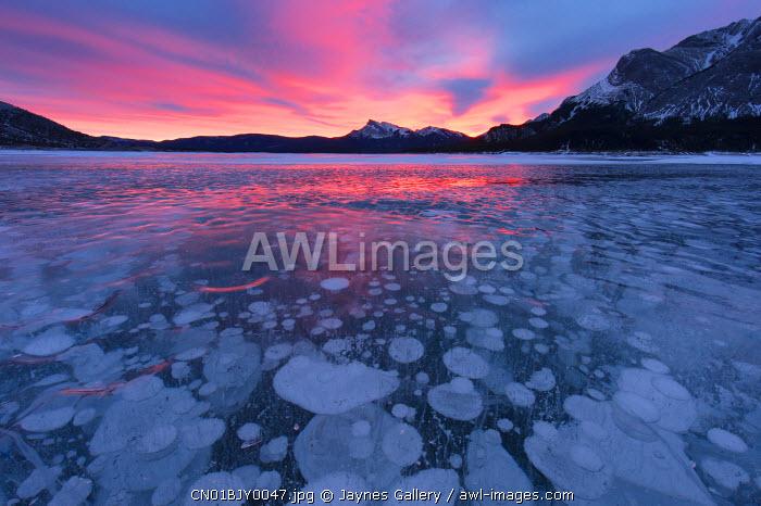 Canada, Alberta, Abraham Lake. Winter sunrise over lake and Mount Michener.