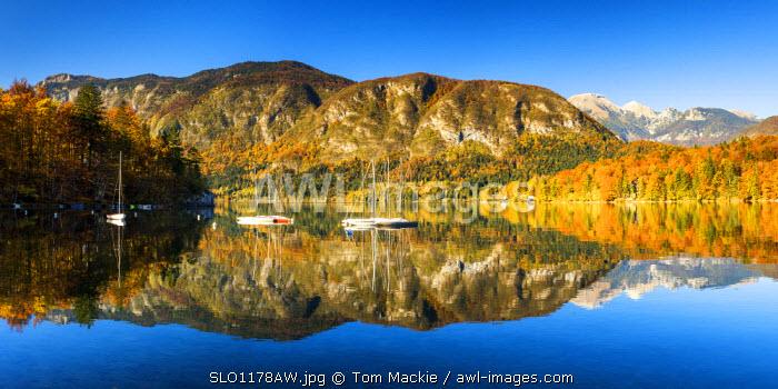 Lake Bohinj in Autumn, Slovenia, Europe