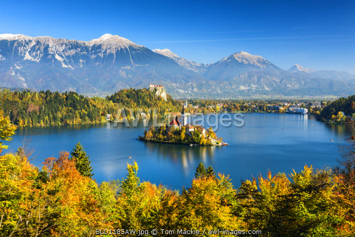 Lake Bled with Assumption of Mary's Pilgrimage Church, Slovenia, Europe