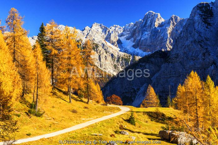 Julian Alps in Autumn, near Kranjska Gora, Slovenia, Europe