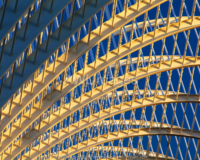 Architectural Abstract, City of Arts & Sciences, Valencia, Spain