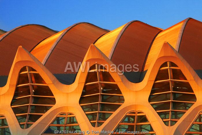 City of Arts & Sciences, Valencia, Spain
