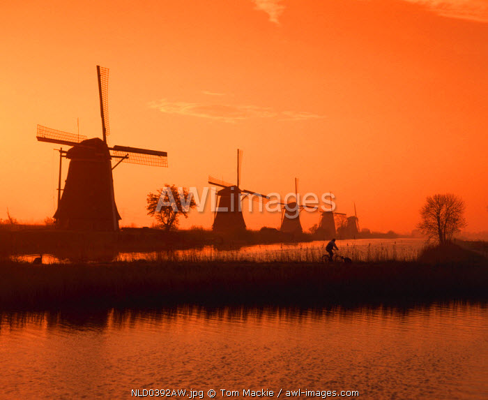 Windmill at Sunrise, Kinderdijk, Holland