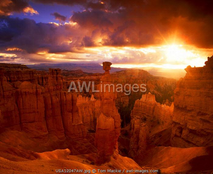 Thor's Hammer, Bryce Canyon National Park, Utah, USA