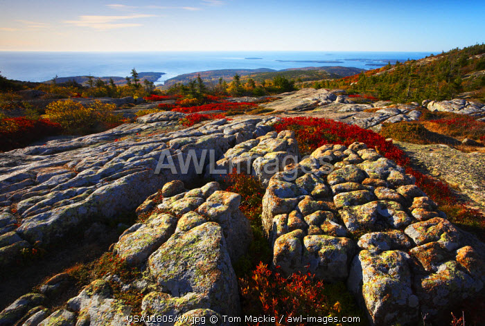 Glacial Rock Striations on Cadillac Mountain, Acadia National Park, Maine, USA