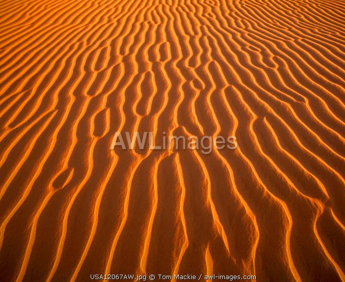 Sand Dune Patterns, Algondones Dunes Wilderness, California, USA