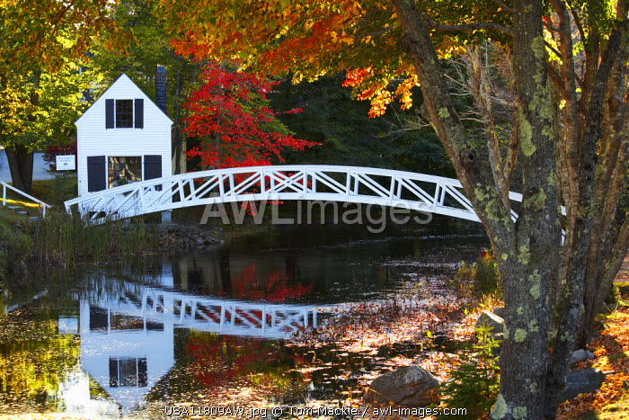 Cottage & Bridge in Autumn, Somesville, Maine, USA