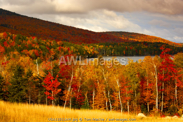 View above Branch Lake in Autumn, Maine, USA