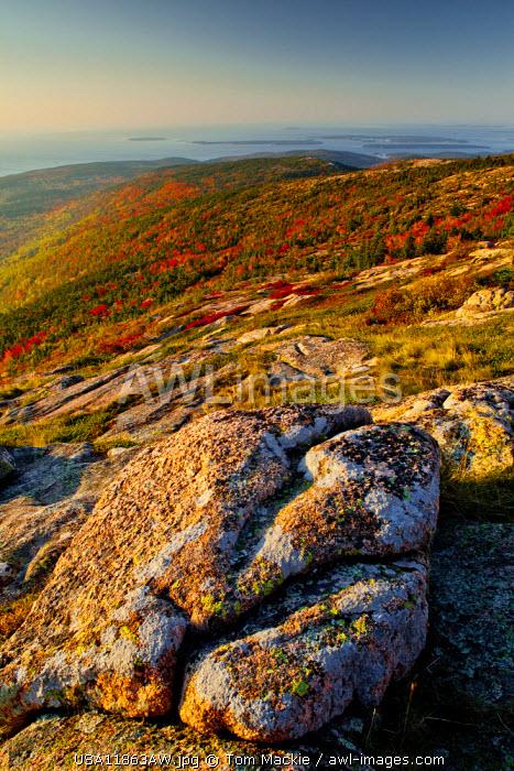 Mt. Cadillac in Autumn, Acadia National Park, Maine, USA