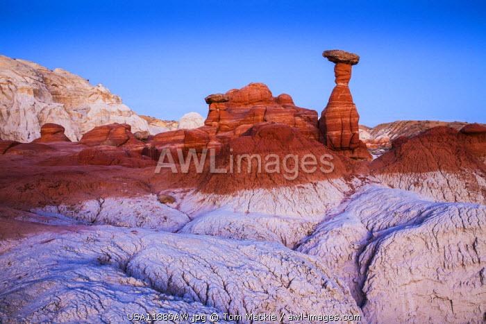 The Toadstools, Paria Rimrocks, Utah, USA