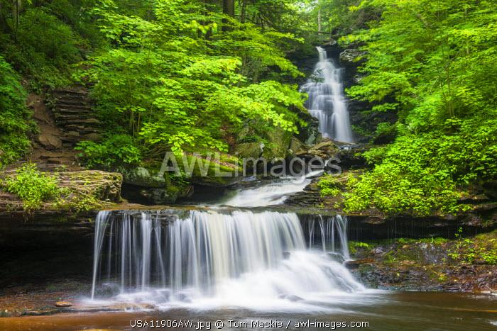 AWL Images Ozone Falls, Ricketts Glen State Park, Sullivan