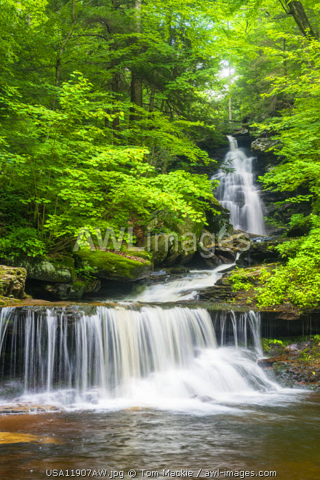 Ozone Falls, Ricketts Glen State Park, Sullivan County, Pennsylvania, USA