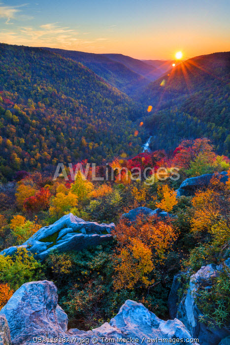 Lindy Point at Sunset in Autumn, Blackwater Falls State Park, West Virginia, USA
