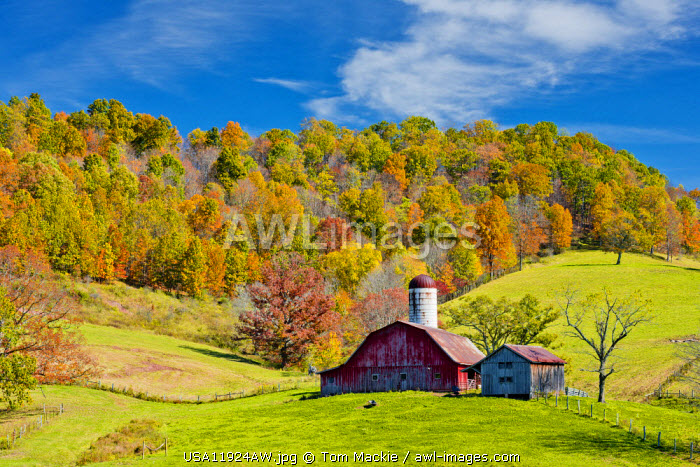 Red Barn in Autumn, Virginia, USA
