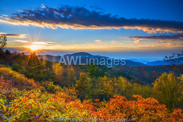 Autumn Sunrise, Blue Ridge Mountains, Shenandoah National Park, Virginia, USA