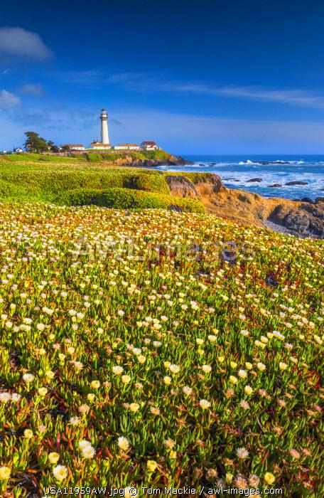 Pigeon Point Lighthouse, near Pescadero, California, USA