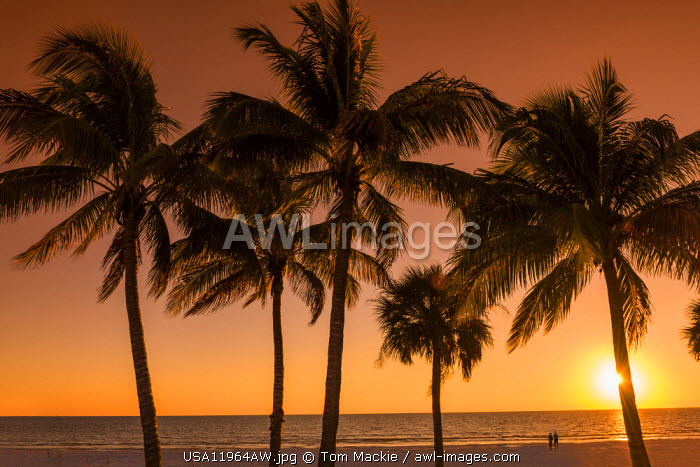 Couple on Beach at Sunset, Fort Myers Beach, Florida, USA