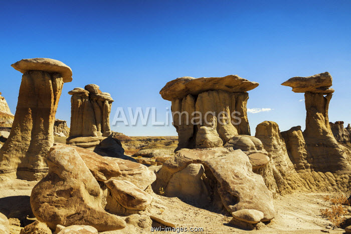 Hoodoos, Bisti Wilderness Area, New Mexico, USA