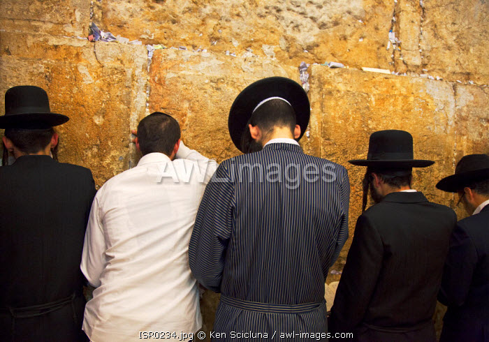 Israel, Jerusalem. Jews mourning and praying at the Western Wall for the destruction of the Holy Temple and launch into exile during the Tisha B'Av final day or 9 Av which is the most intense with Jews sleeping the night out under the stars near the wall. Unesco.