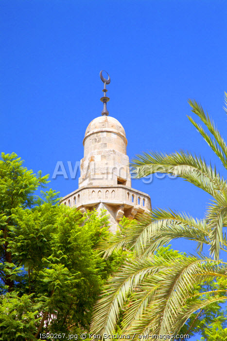 Israel, Jerusalem. Minaret with Palm trees. Unesco.