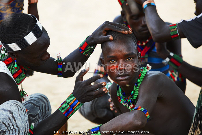 Hamer men prepare for the 'jumping of the bulls' ceremony, Ethiopia, Africa