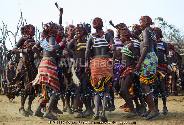 Women from the Hamer tribe dance during the 'jumping of the bulls' ceremony, Ethiopia, Africa