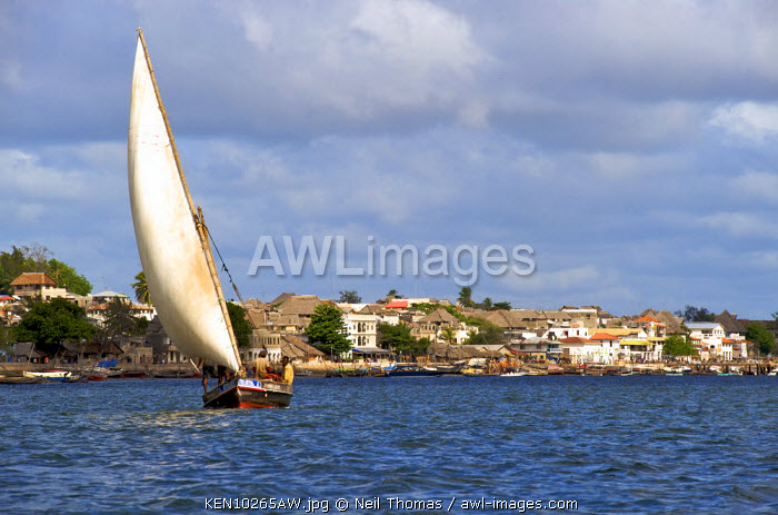 Dhow in front of Lamu town, Kenya, Africa