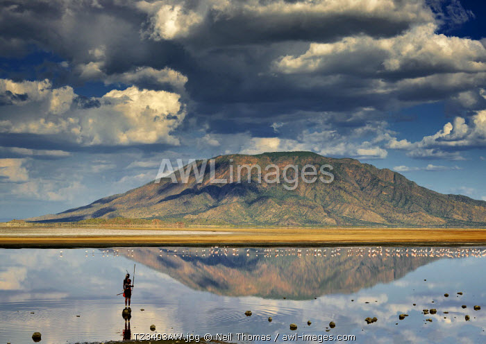Maasai warrior standing in the shallows of lake Natron looking at Shompole mountain, Tanzania, Africa