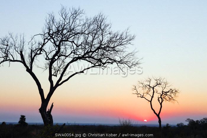 Swaziland, Hlane Royal National Park, sunset