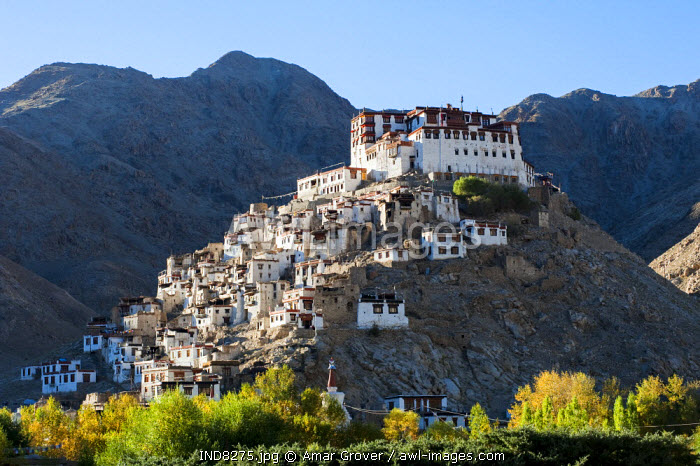 India, Jammu & Kashmir, Ladakh, Chemrey. Founded in the 17th century, Chemrey Monastery, or gompa, stands perched on a hill overlooking Chemrey village.
