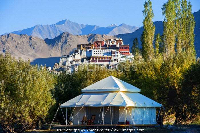 India, Jammu & Kashmir, Ladakh, Thiksey. In the vicinity of Thiksey Monastery, spacious luxury tents at the Ultimate Travelling Camp offer unrivalled comfort in the Indus Valley.