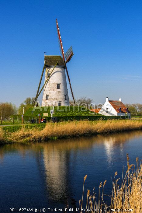 Windmill along Damme canal, Damme, West Flanders, Belgium