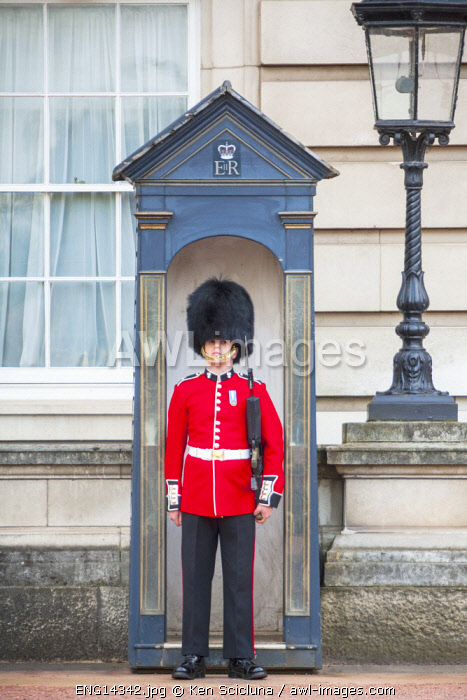 United Kingdom. England. London. Welsh Guards at their post in front of Buckingham Palace.