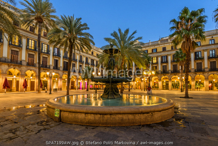 Evening view of Plaza Real or Placa Reial, Barcelona, Catalonia, Spain