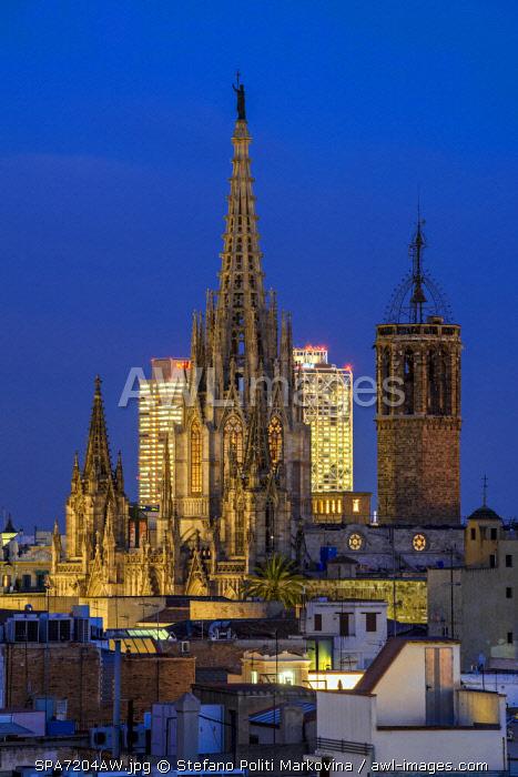 Night view of Cathedral of Santa Eulalia, Barcelona, Catalonia, Spain