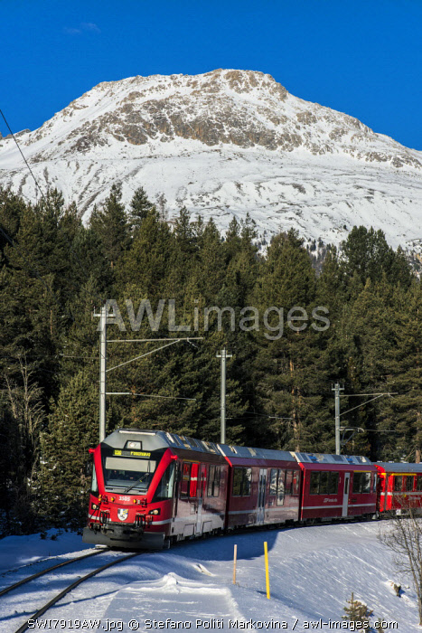 Winter view of the famous Bernina Express red train near Pontresina, Graubunden, Switzerland