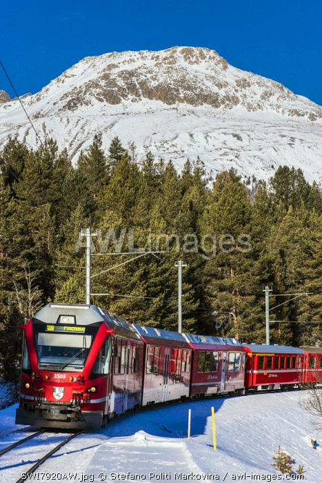 Winter view of the famous Bernina Express red train near Pontresina, Graubunden, Switzerland